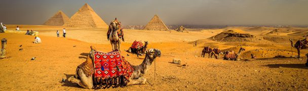 Overwinteren in Egypte